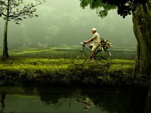 Man riding a bicycle in the countryside