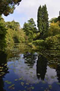lake in country house gardens